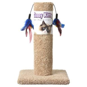 Classy Kitty Cat Scratching Post with Feathers