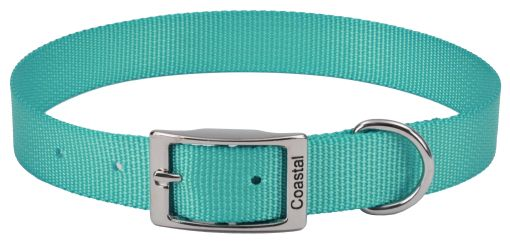 Coastal Pet Single-ply Teal Nylon Dog Collar