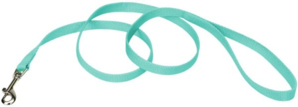 Coastal Pet Single-ply Teal Nylon Dog Lead