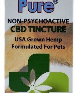 Iceland Pure CBD Enhanced Calming & Pain Relieving Product for Dogs