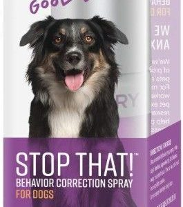 Sentry Stop That! Behavior Correction Spray for Dogs