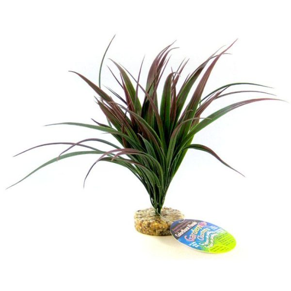 Blue Ribbon Amazonian Plant with Gravel Base Plum