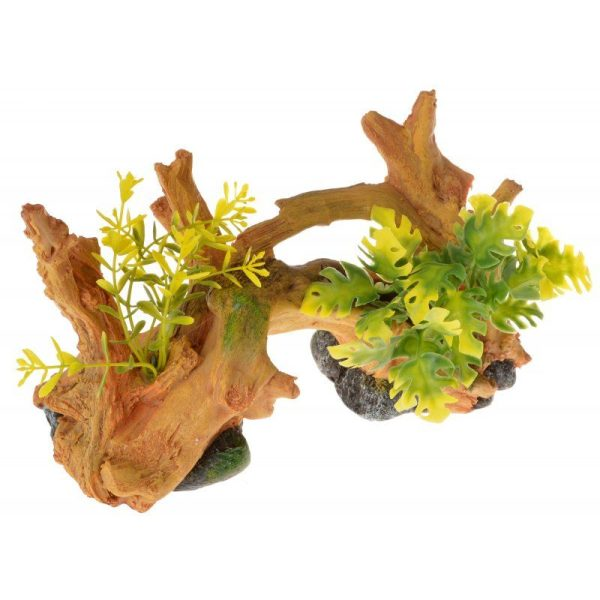 Exotic Environments Driftwood Centerpiece with Plants - Small