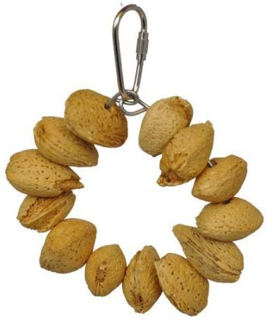 AE Cage Company Happy Beaks Almond Nut Ring Jr