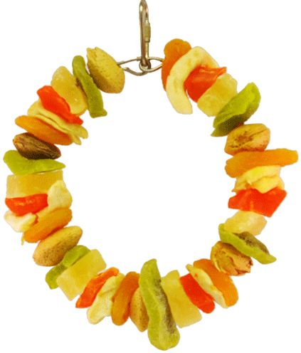 AE Cage Company Happy Beaks Deluxe Fruit Ring Tropical Delight