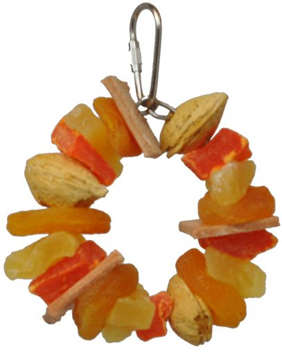 AE Cage Company Happy Beaks Fruit and Nut Ring Jr Tropical Delight