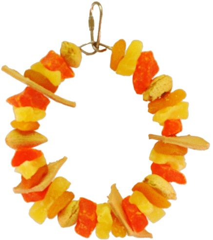 AE Cage Company Happy Beaks Mixed Fruit Ring Tropical Delight