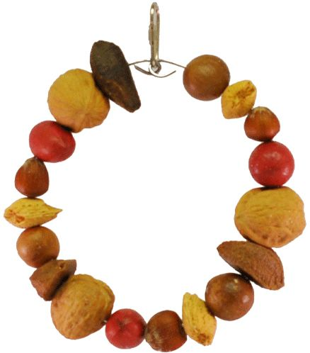 AE Cage Company Happy Beaks Mixed Nut Ring Tropical Delight