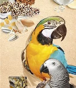 A&E Cage Company Smakers Parrot MAXI Nut/Coconut Treat Sticks