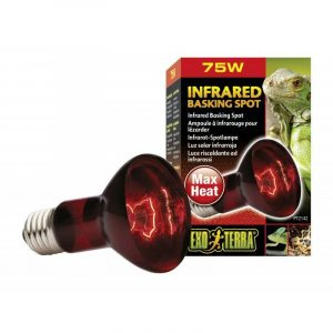 Exo-Terra Heat Glo Infrared Heat Lamp