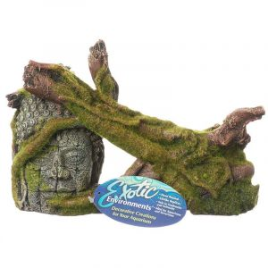 Exotic Environments Moss Covered Ruin & Roots