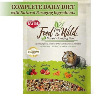 Kaytee Food From The Wild Guinea Pig