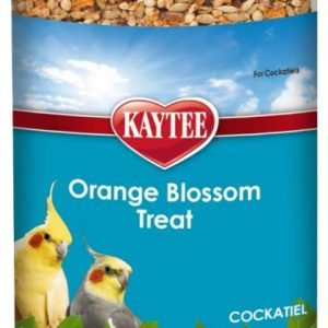 Kaytee Orange Blossom Treat for Cockatiel