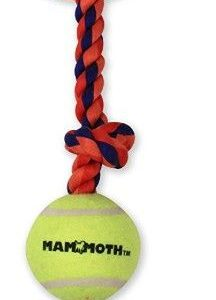 Mammoth Pet Flossy Chews Color 3 Knot Tug with Tennis Ball - Assorted Colors