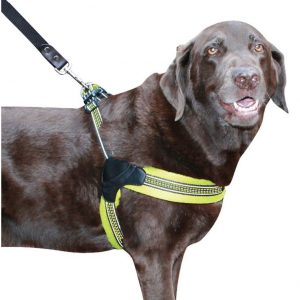 Sporn Easy Fit Dog Harness Yellow